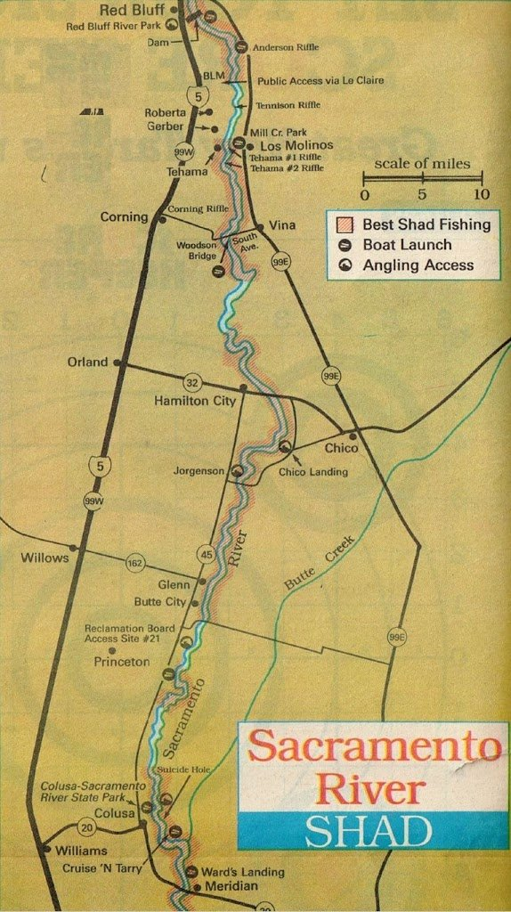 Sacramento river shad report shad fishing map best areas for Sacramento river fishing
